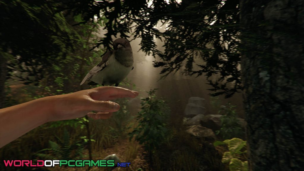 The Forest Game Download Free